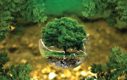 studio e rilievi ambientali